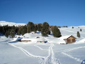 canvere-inverno